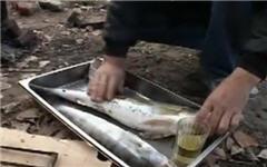 Уха, копчение и балыкование рыбы